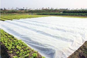 农作物覆盖布